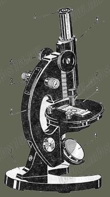 Конструкция микроскопа